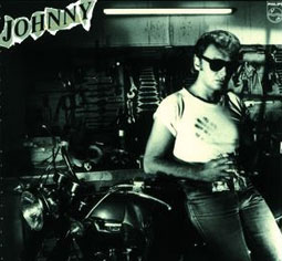 johnny-hallyday-en-pieces-detachees