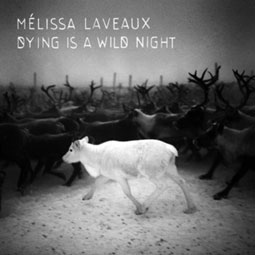 Melissa-Laveaux-dying-is-a-wild-night